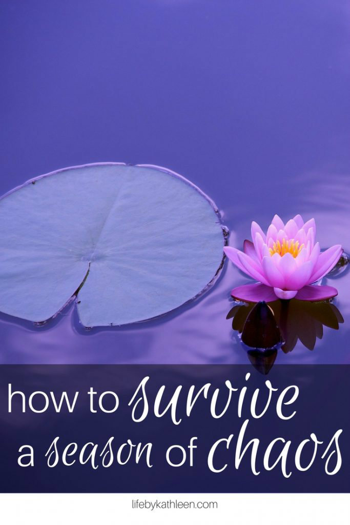 purple flowers in a pond. text overlay how to survive a season of chaos