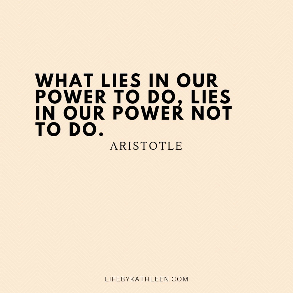 What lies in our power to do, lies in our power not to do - Aristotle